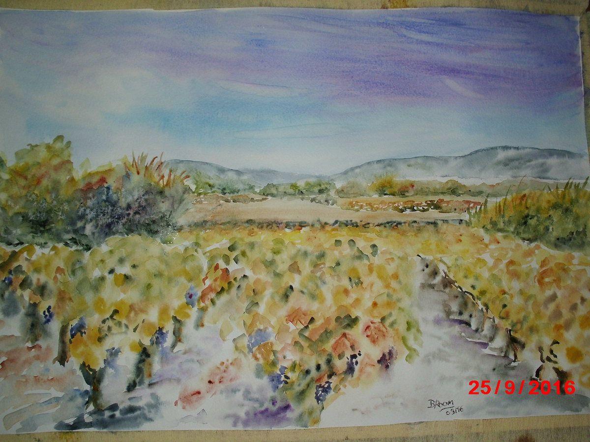 Pic St Loup et La Vaunage et leurs vignes