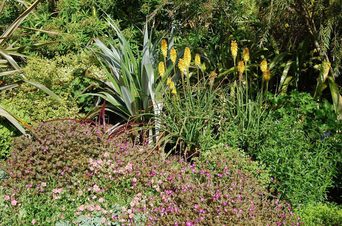 Bretagne - Jardin du Kestellic