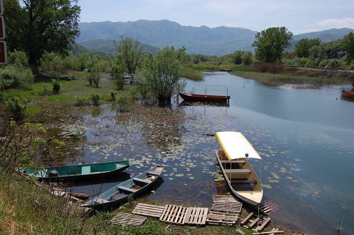 Mont n gro parc national du lac de skadar lankaparc - Conseil national des parcs et jardins ...