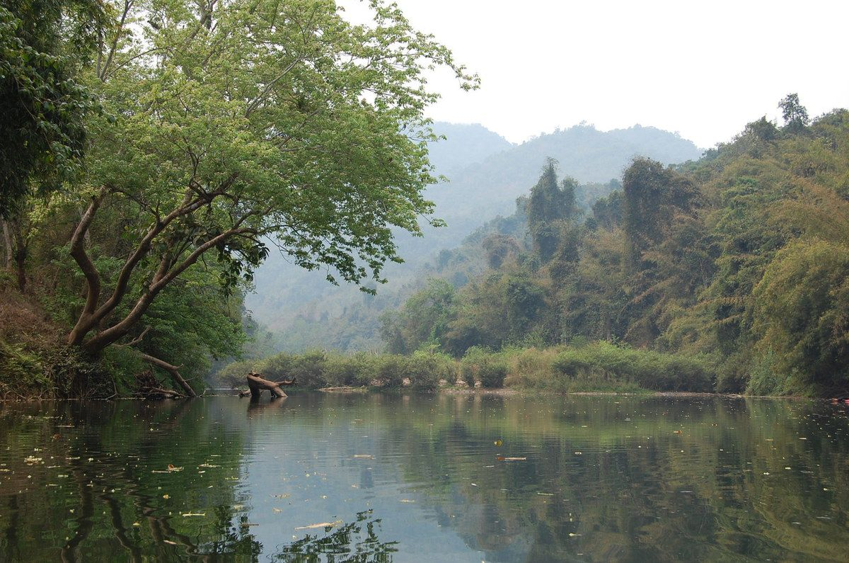 Laos - Nam Ha National Bio-Diversity Conservation Area