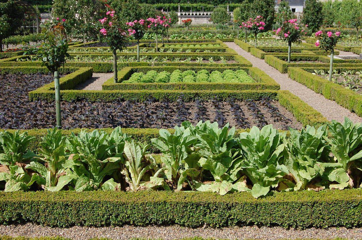 Châteaux de la Loire - Les Jardins du château de Villandry