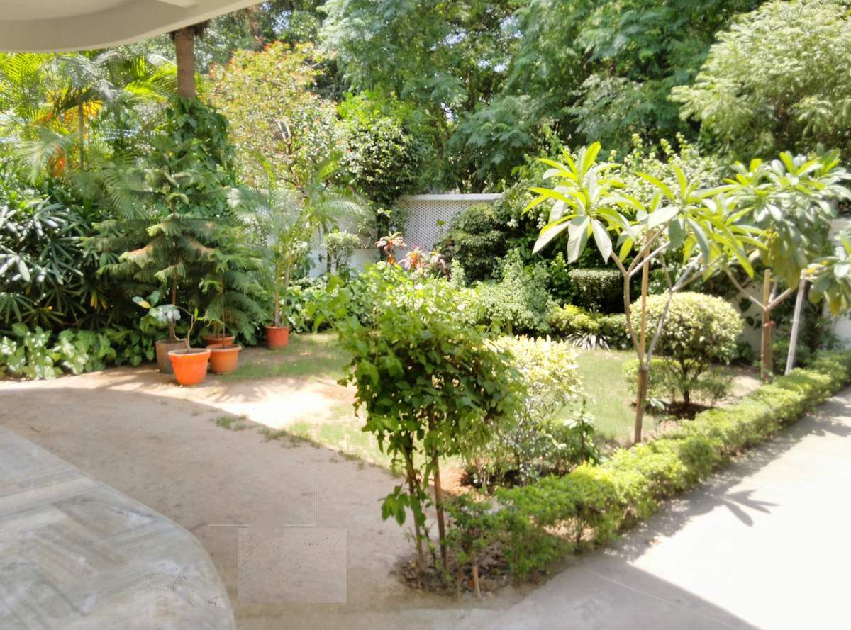For Rent Jor Bagh South Delhi Beautiful 5 Bedroom Independent