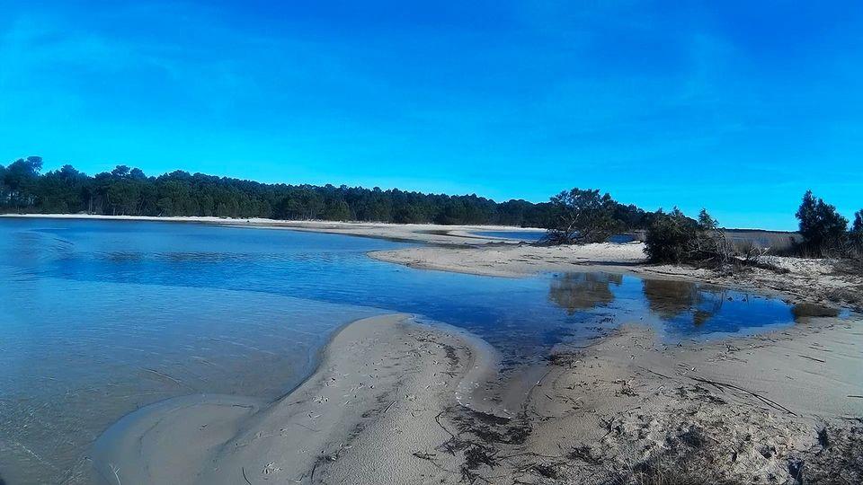 Les abords du lac de Sanguinet...