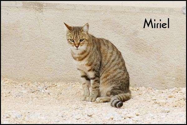 Miriel, marrainée par Denise (& Phiphi)