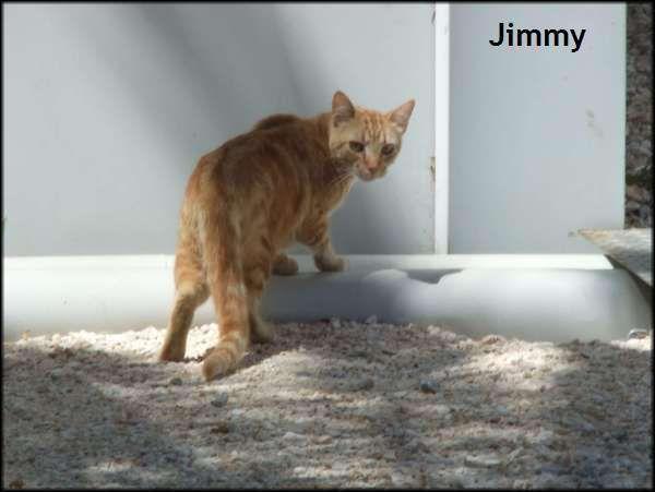 Jimmy, marrainé par Lara