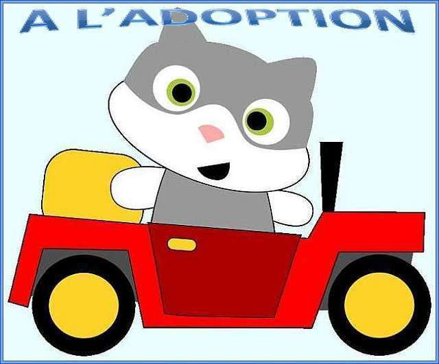 Nouvelle page &quot&#x3B;A l'adoption&quot&#x3B;