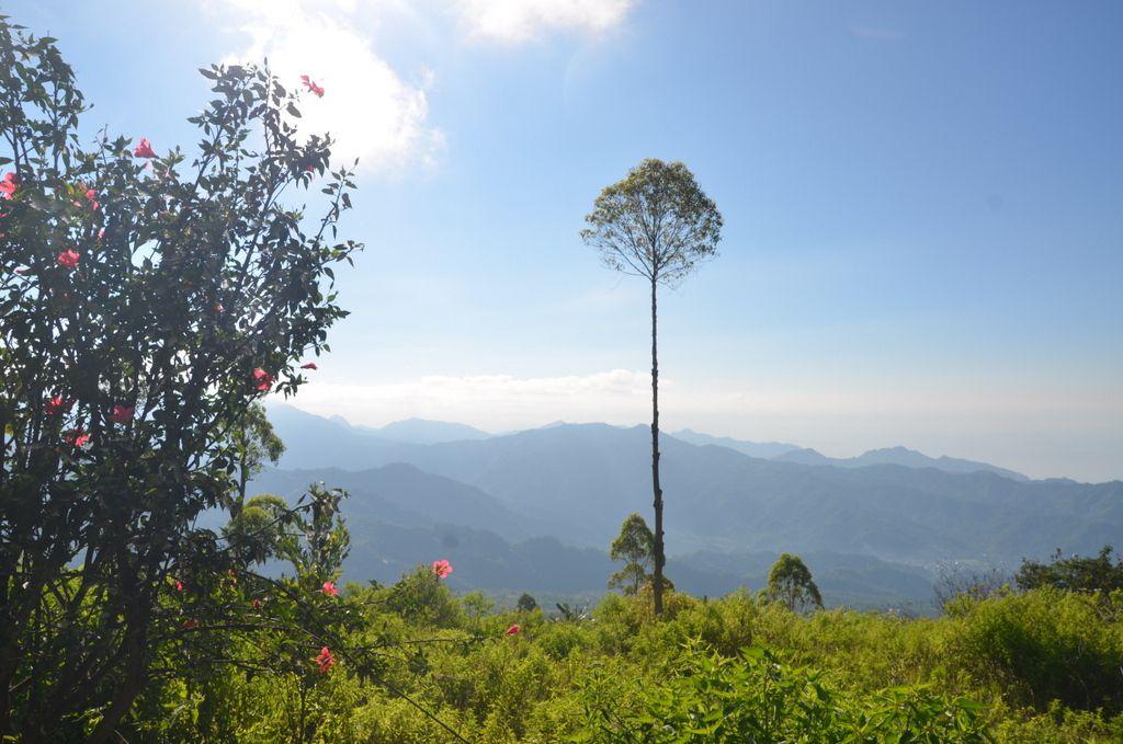 Le paysage est plutôt chouette en redescendant la montagne.