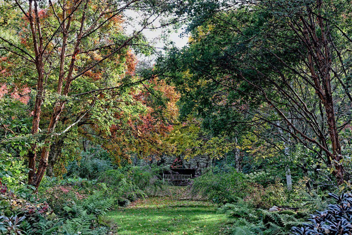 L'Arboretum de la Sédelle - 2