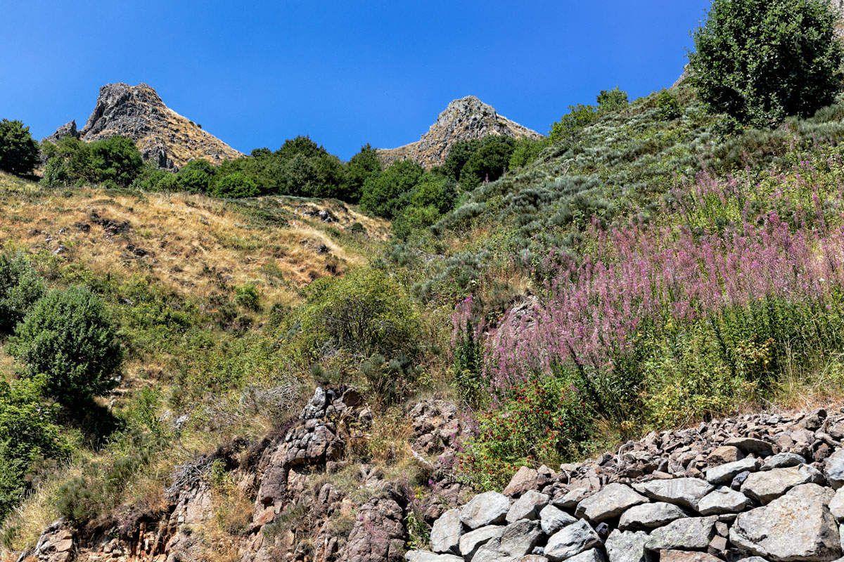 La Montagne Ardéchoise - 2
