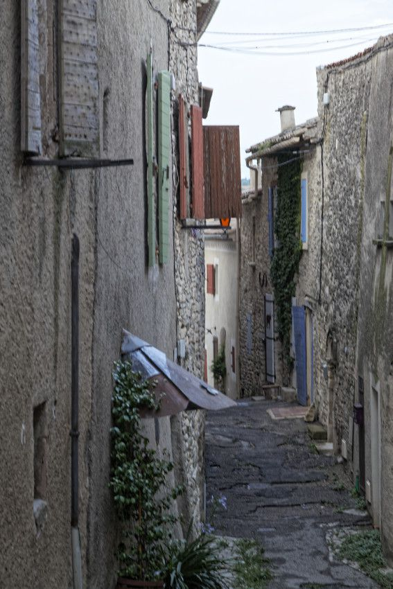 Dauphin - Haute-Provence