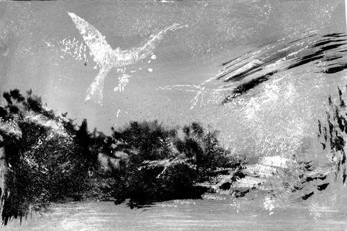 À mes oiseaux / n &amp&#x3B; b quatrième vol