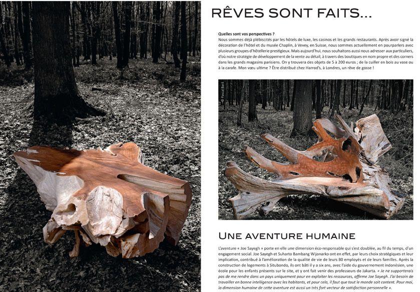 Collection Joe Sayegh PARIS : Le bois un matériau noble