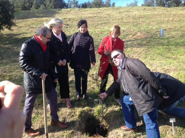 Inauguration de la plantation des 50 chênes lièges au lac de la Raho