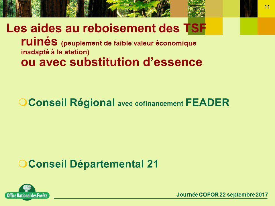 Plantation de chênes – Aides forestières (réunion thématique du 22 septembre à Auxonne)