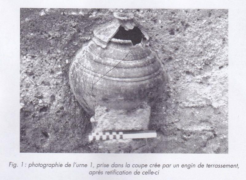 Photographie de l'ensemble en contexte archéologique... (FICHTL et alii 2005)