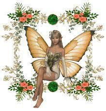 Box thème papillons
