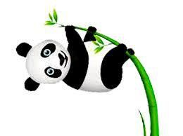 Panda nouvelle avancée