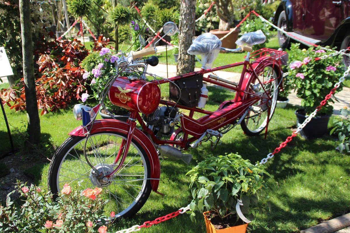 Photos Jardinerie Laplace à Chelles