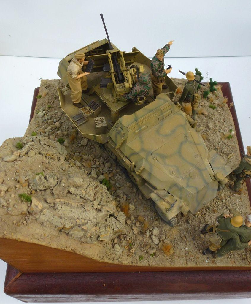 Sdkfz 251/17 - Tunisie février 1943 - Opération Ochenkopf