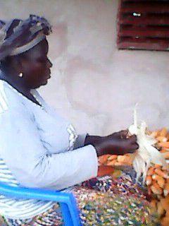 Photo de récolte de maïs du champ pédagogique du projet Wurodinisso