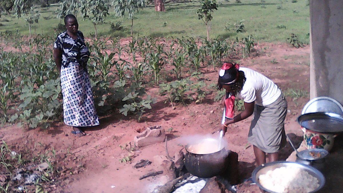 Désherbage et montaison des semis de la ferme pédagogique agropastorale Wurodinisso