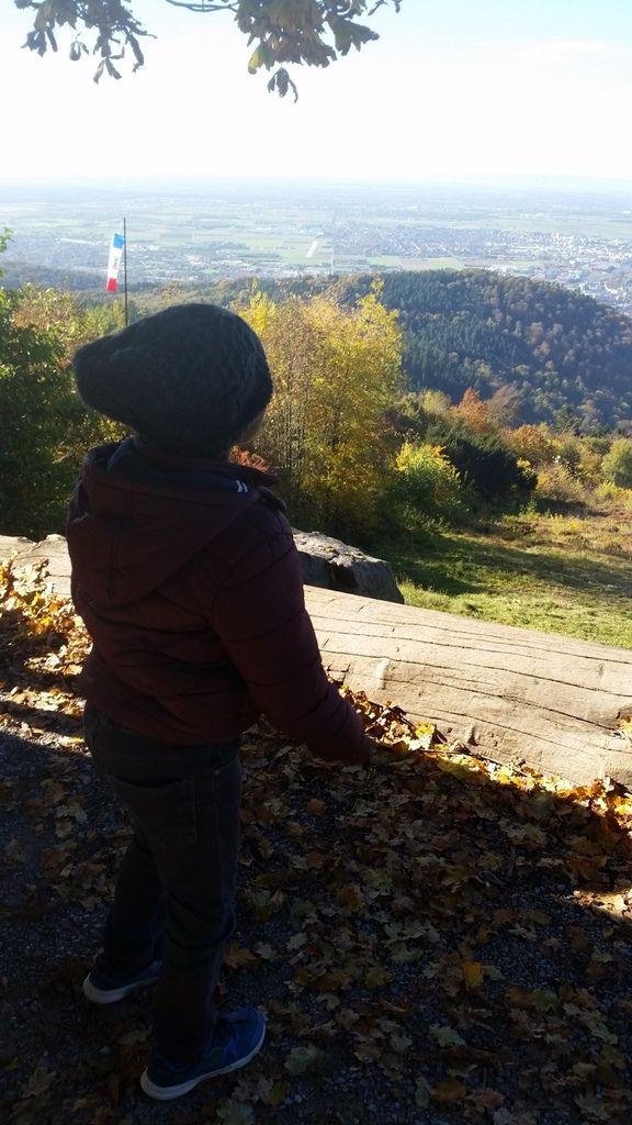 Le petit train pour visiter le chateau heidelberg