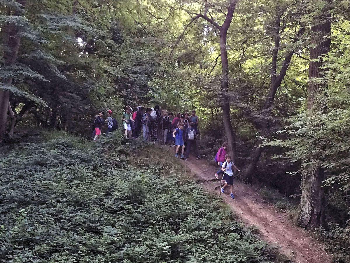 La pente du contrefort du Réservoir Neuf offre une belle piste de descente