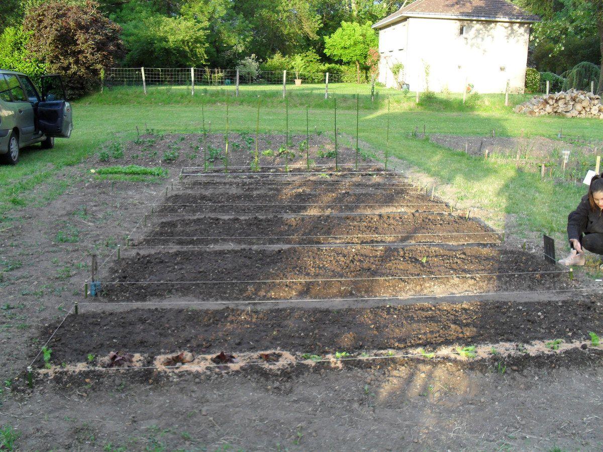 Jardins partagés 2015
