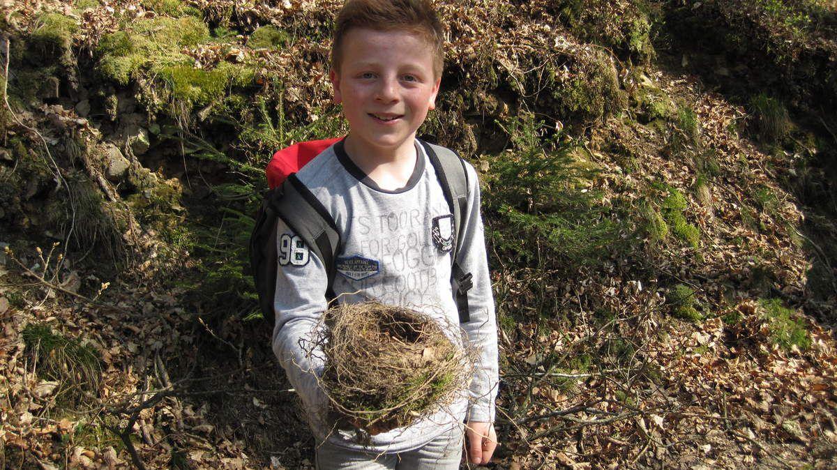 A la découverte des castors (Marcouray) (P6)