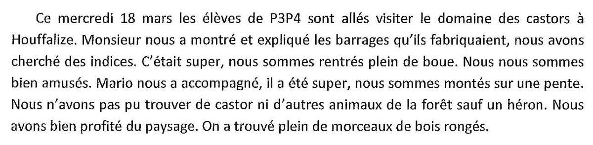 A la découverte des castors (Houffalize) (P3 P4)