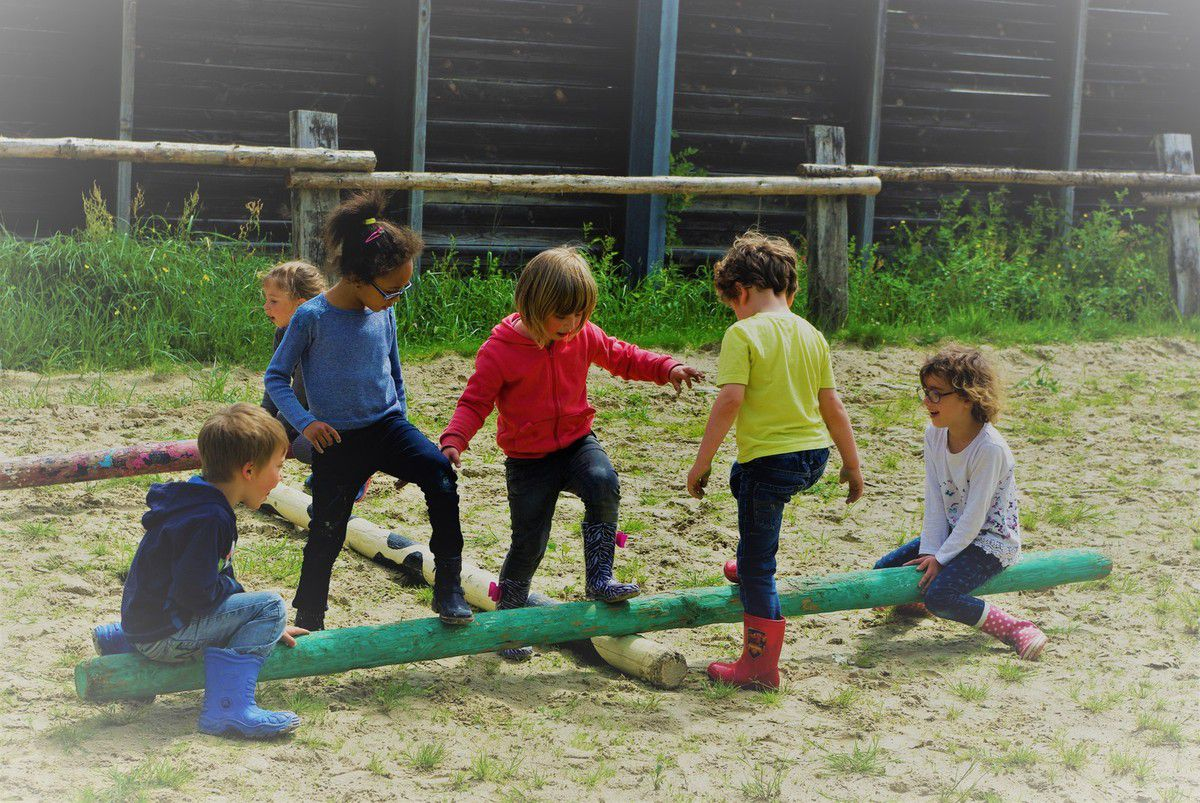 LES ECURIES DE NINANE ( section maternelle )