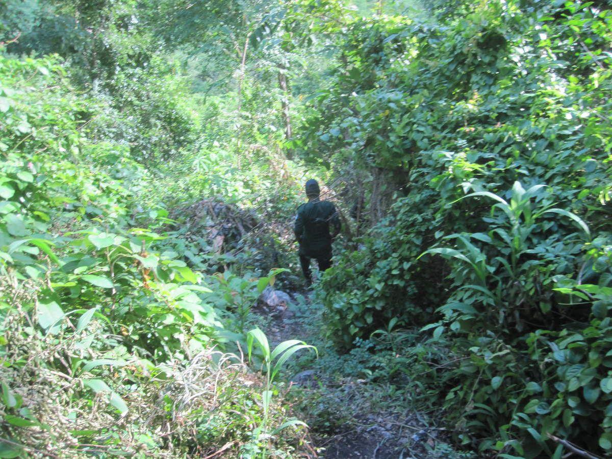 Moulage du carré A26 de la grotte de laang spean (Cambodge)