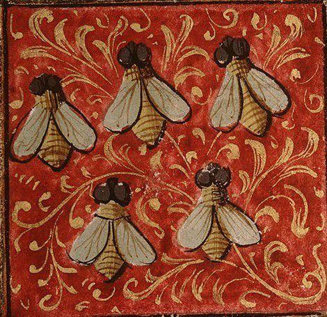 dis pourquoi des abeilles le blog de lacroixetlesbannieres. Black Bedroom Furniture Sets. Home Design Ideas