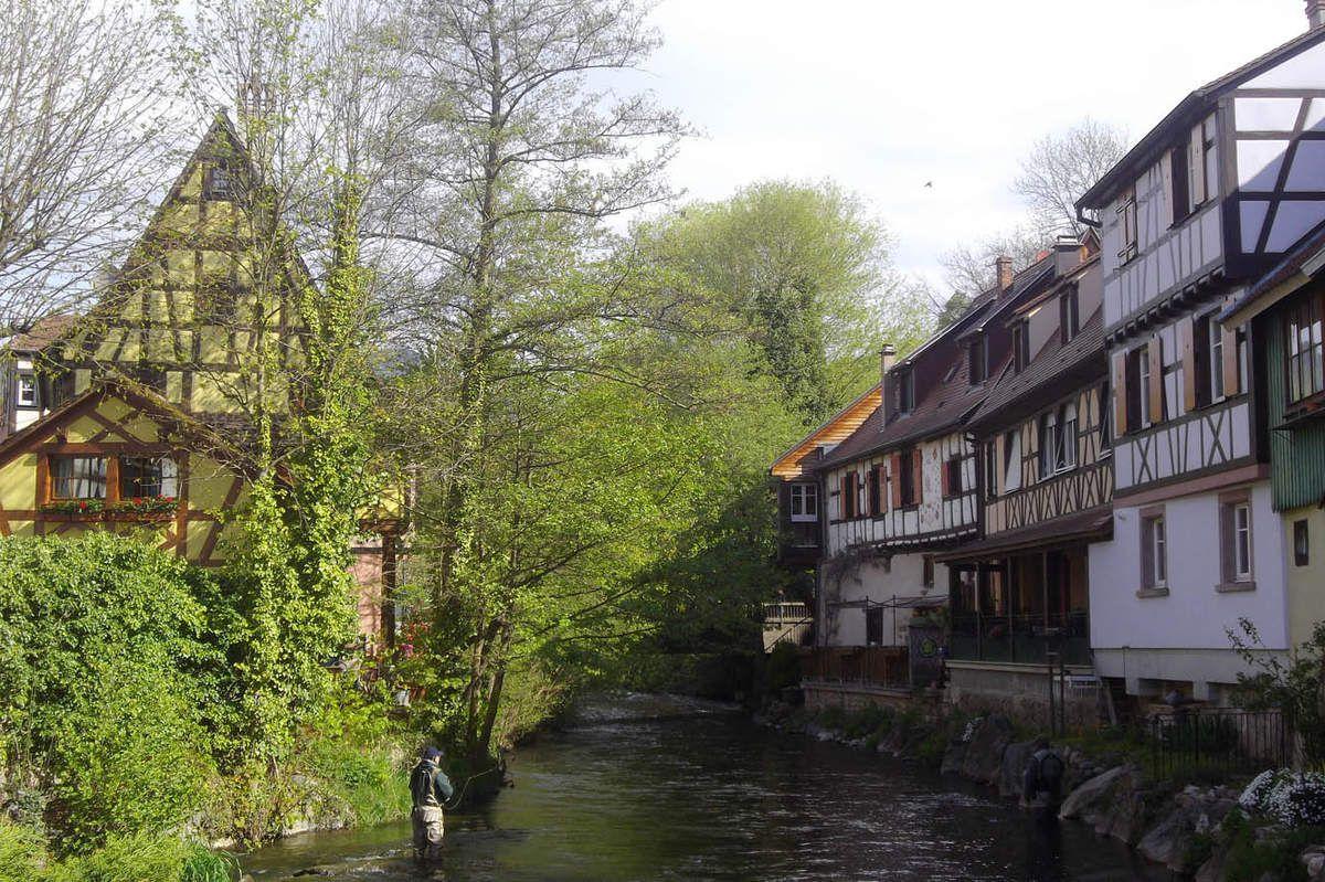 Ballade colorée et historique dans les beaux villages Alsacien de Kaysersberg et de Ribauvillé.