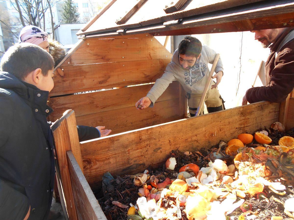 Retournement du compost