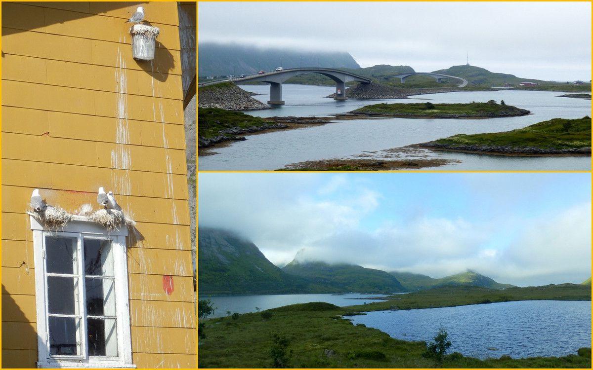 Aux îles Lofoten