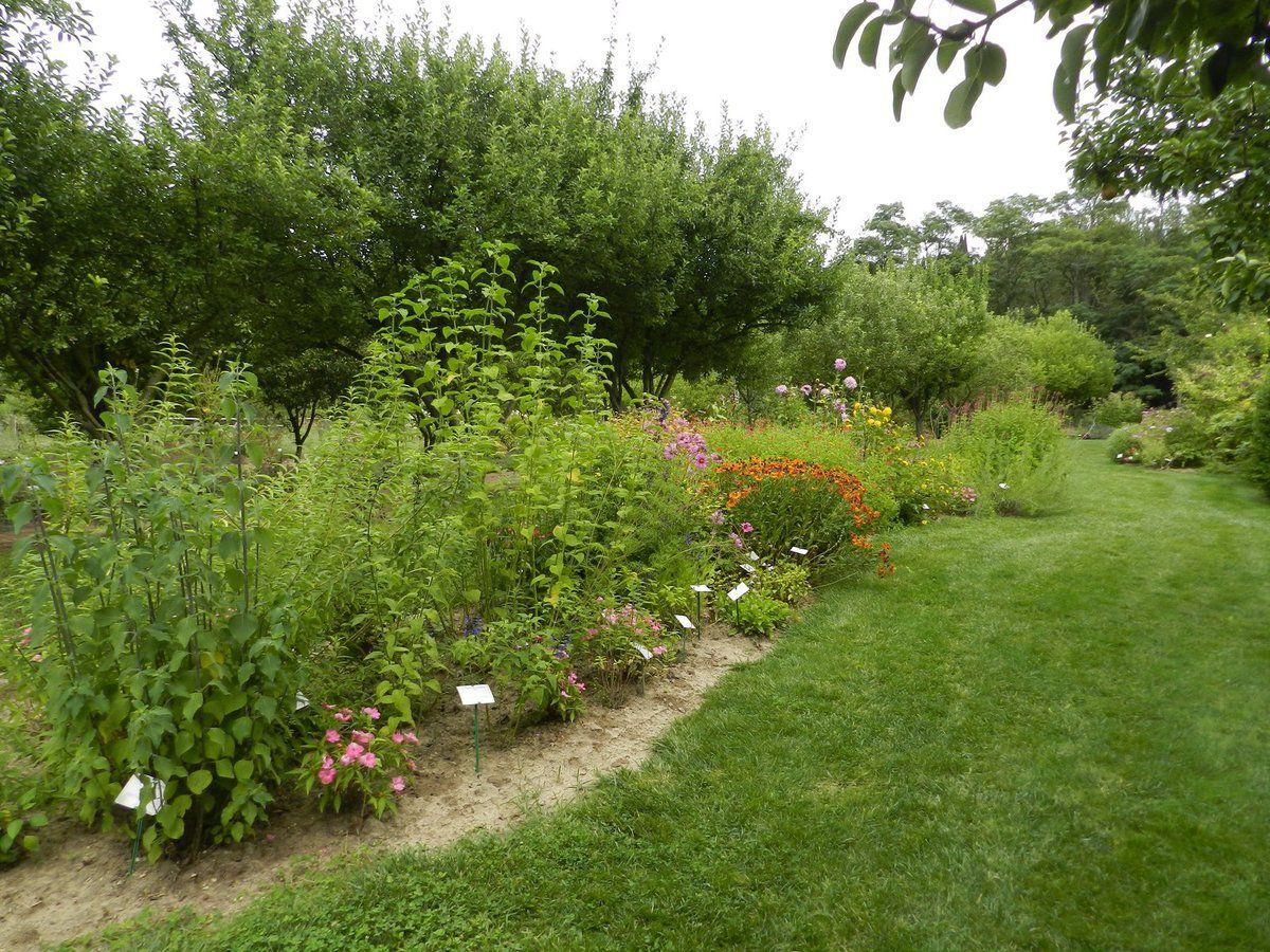 Le blog de felipeche felipeche r alise des films for Jardin aux plantes