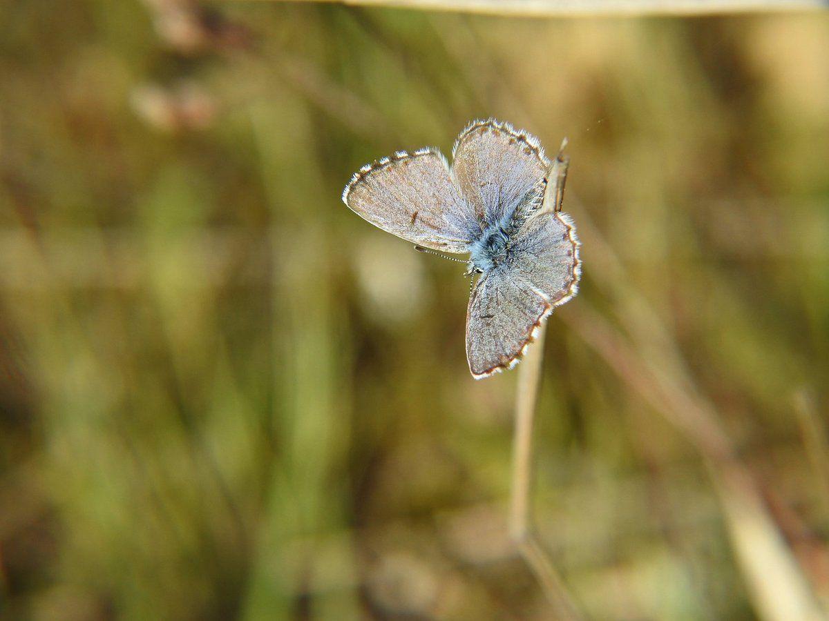 Petit tour à la découverte des beautés naturelles du moment à Malras