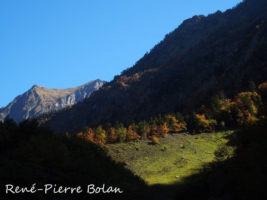 1325 : Vallée du Lis.