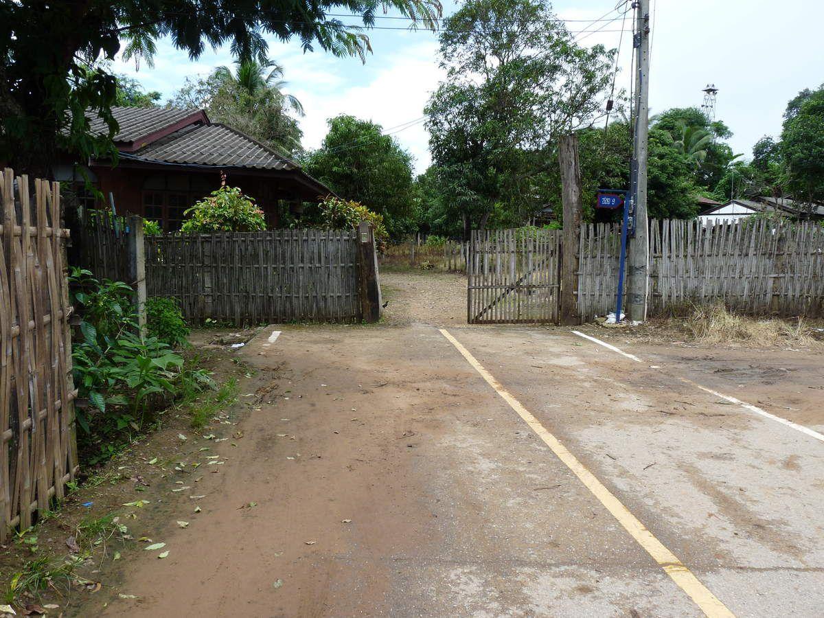 Paysages de rizières (pour ne pas changer ;-) / fin de route / Wat Phra That Doi Kong Mu et vue sur Mae Hong Son