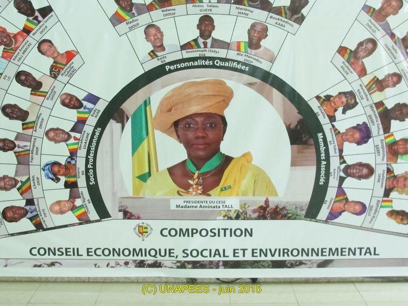 UNAPEES au Conseil Economique, Social et Environnemental(CESE)