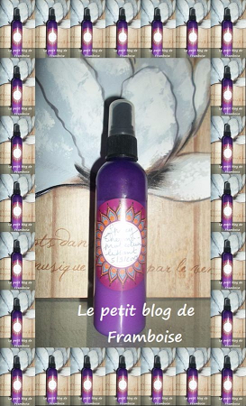 Spray thermo-protecteur lissant