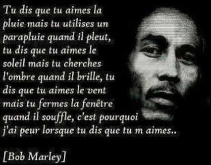 Bob Marley 18 Citations La Vache Rose