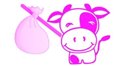 La vache rose et la fourmi rouge