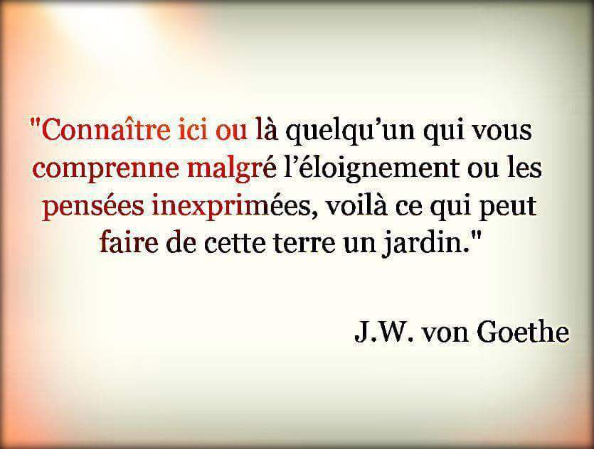Goethe - 8 Citations