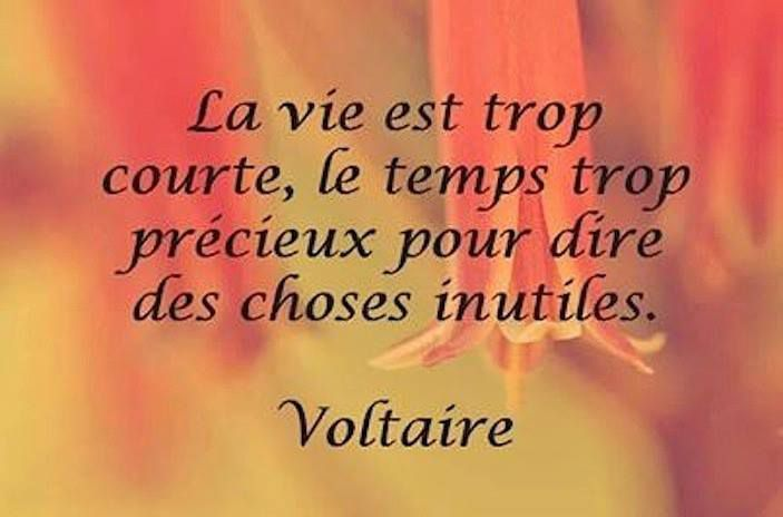Voltaire - 10 citations en images