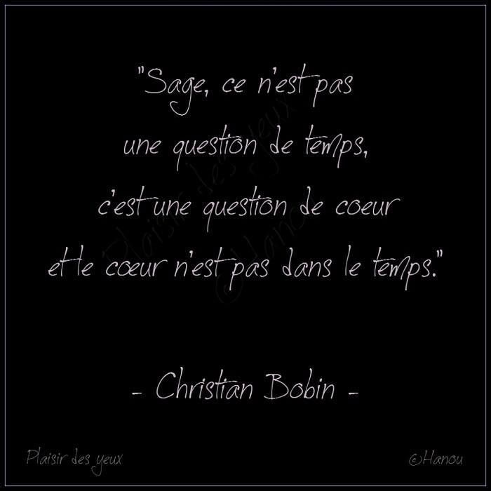 Christian Bobin 12 Citations La Vache Rose