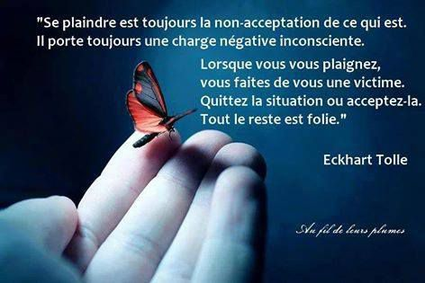 Eckhart Tolle 15 Citations La Vache Rose