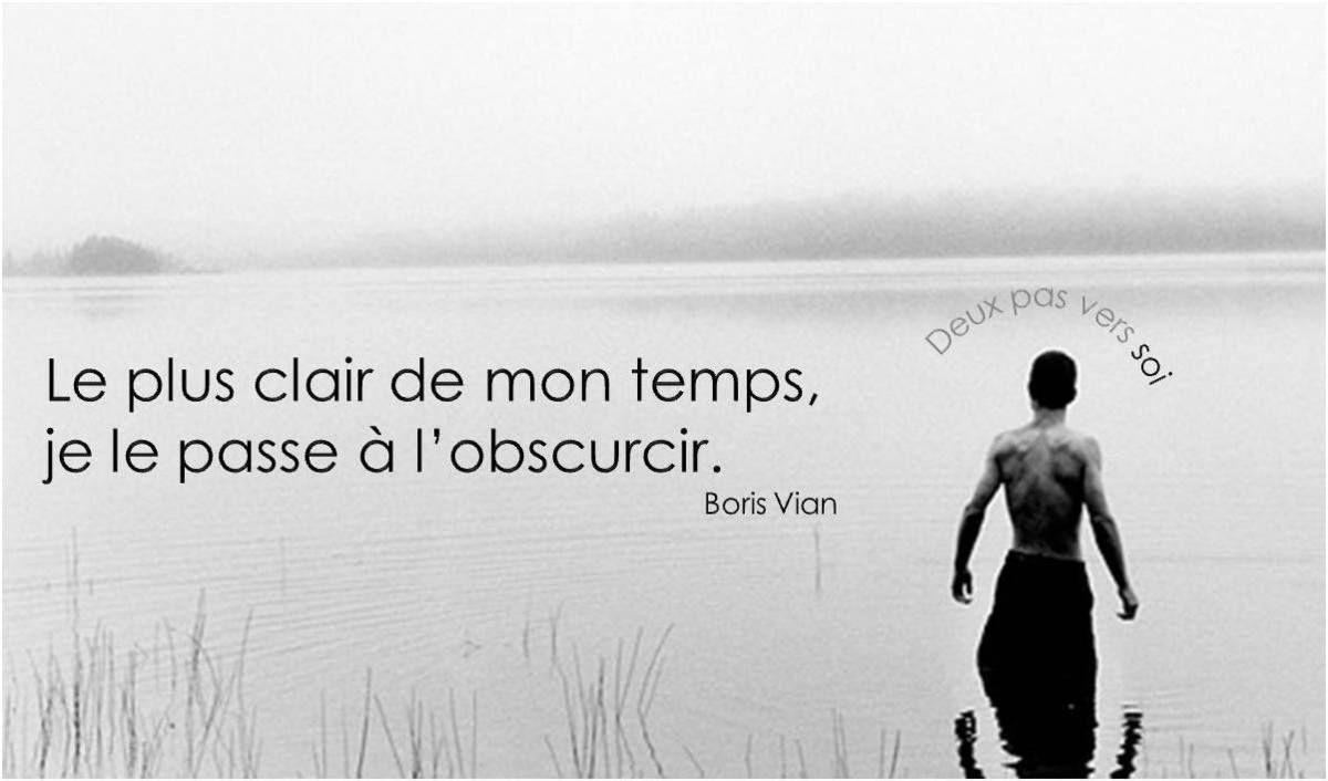 Boris Vian 7 Citations En Images La Vache Rose