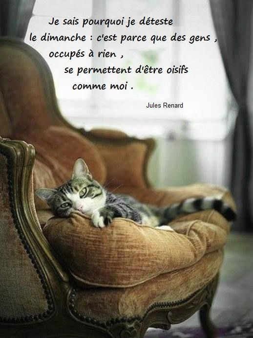 Jules Renard - 6 Citations